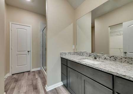 St. Clair master bathroom with granite counter, undermount sink, and walk in shower stall