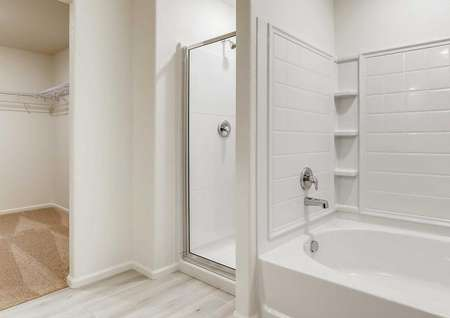 Master bath with separate bath tub and shower, leading into the walk-in closet.