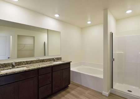 Primary bathroom featuring an extended vanity with two sinks and polished granite countertops, a soaker tub and step-in shower.