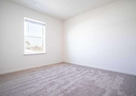 Aitkin bedroom with white frame windows and baseboards, light color carpeting, and overhead light