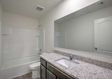 Guest bathroom with granite countertops and a dual shower and bathtub.