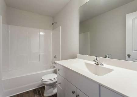 Fripp guest bath with large vanity, mirror, and white fixtures
