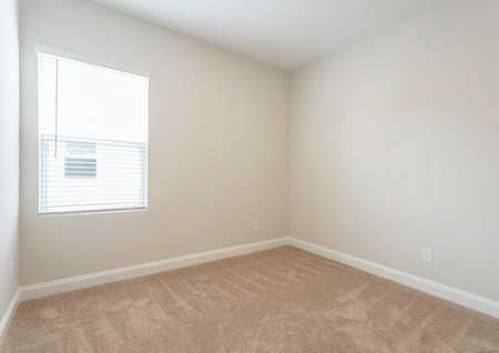 Alamance bedroom with large white-frame window, carpeting, and off white walls