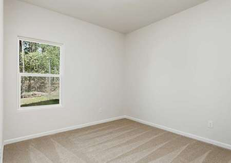 Alamance bedroom with off white walls, tan carpet, and white window