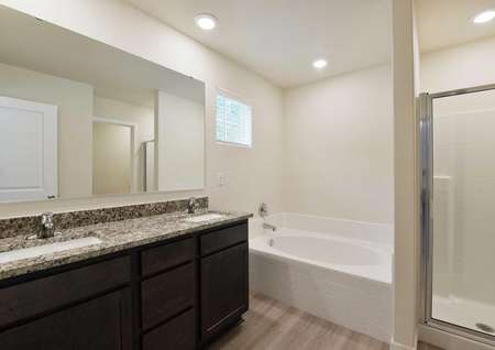 Hawthorn bathroom with large vanity, two sinks, tub and separate shower