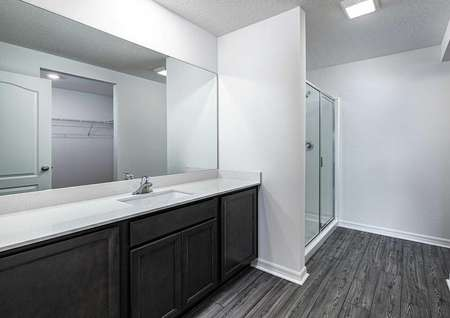 The master bathroom featuring large countertop space, a step-in shower and a walk-in closet.