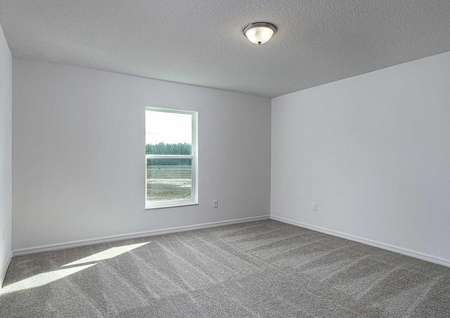 Spare bedroom with carpeted flooring and a window that lets in plenty of natural light.