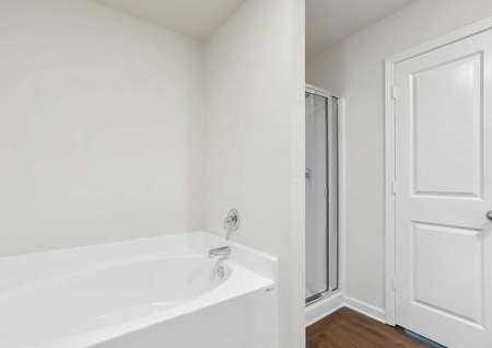The master bathroom featuring a step-in shower and separate soaker tub.