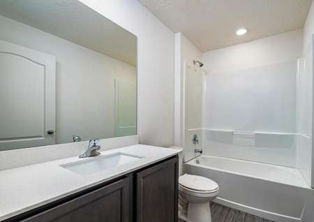 Full bathroom with large countertop space.