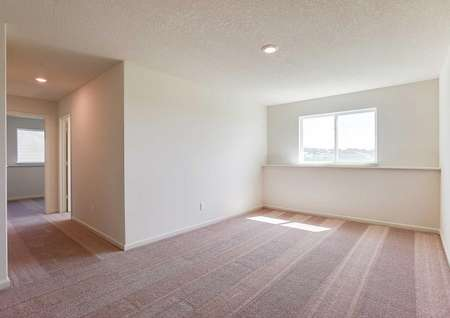 Nicollet bedroom completed with soft brown carpets, recessed light, and large white frame window