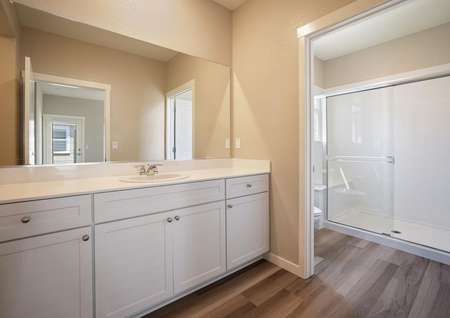 The master bath has a stunning vanity and huge walk-in shower.