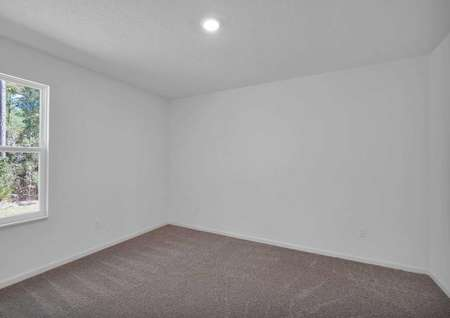 Spare bedroom with carpeted floors and a large window.